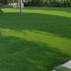 العشب-الصناعي-للمنازل